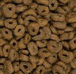 CARNIS | KAT Graanvrije Zalm brok | 10 kg