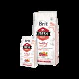 BRIT | Fresh Beef with Pumpkin Puppy Large | 12 kg_