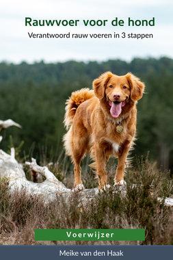 BOEK | Rauwvoer voor de hond | Meike van den Haak (Voerwijzer)