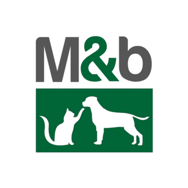 M&B | Verwen, snack en speel - KAT | 1 pakket