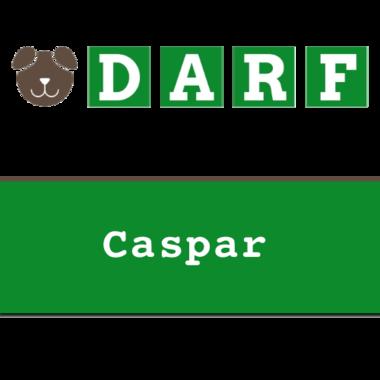 DARF | Caspar | rollen 19 x 245 gram