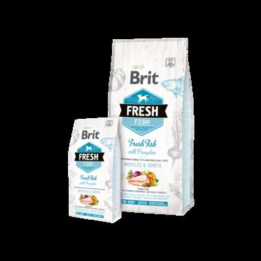 BRIT | Fresh Fish with Pumpkin Adult Large 12 kg [ THT 23 okt 2021 ]