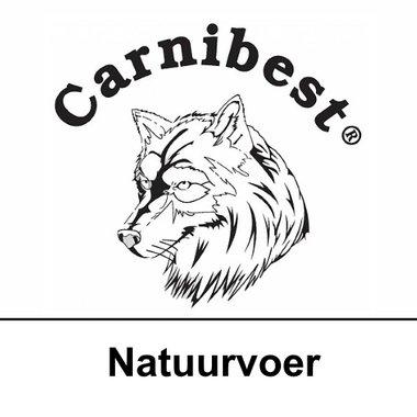 CARNIBEST | KAT | Natuurvoer | 500 gram
