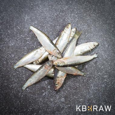 KB-BARF | Sprot | 1 kg