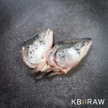 KB-BARF | Zalmkoppen | 2 stuks