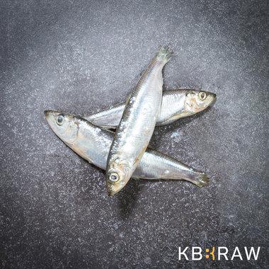 KB-BARF | Haring | 1 kg