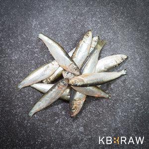 KB-BARF   Sprot   1 kg